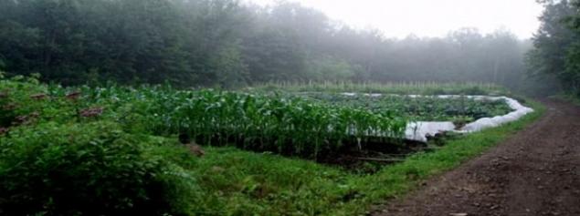 environment-care-farming -02